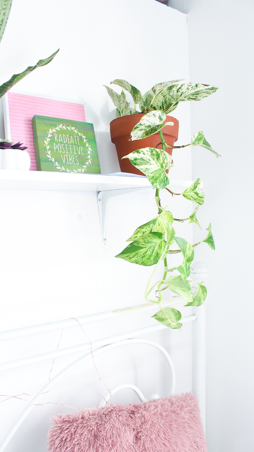Diy Pinterest Inspired Plant Shelf By Roxy James Roxy James